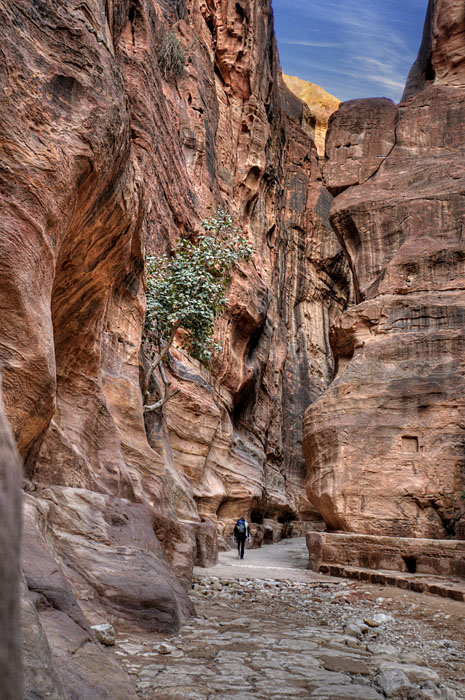 The Siq Musa canyon- Petra